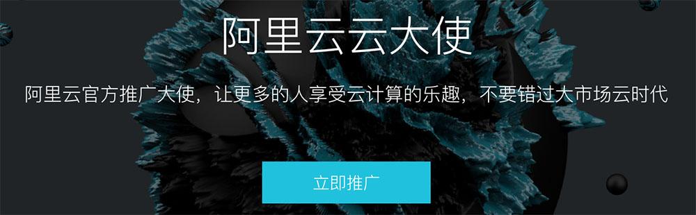 云大使报名页面